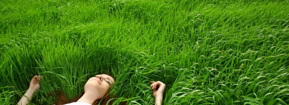 detente dans l'herbe